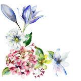 Decorative wild flowers.  watercolour illustration Stock Images