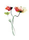 Decorative wild flowers. watercolourillustration Royalty Free Stock Photos