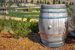 Wine Barrel at a Country Vineyard. A decorative wine barrel from a vineyard in the Okanagen Valley in British Columbia, Canada royalty free stock photos