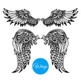 Decorative Wings Set. With hand drawn ornamental feathers  vector illustration Royalty Free Stock Photography
