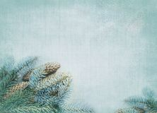 Decorative winter background Royalty Free Stock Photos