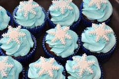 Decorative winter cupcakes Royalty Free Stock Images