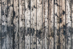 Decorative wooden background. Vintage wooden background from planks with knots royalty free stock photography