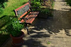 Decorative wooden bench with smithcraft on backrest, placed on tiled floor near cultivated lawn and flower pots. In morning sunshine Stock Photography