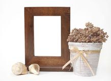 Decorative wooden frame, flowerpot and shells Stock Photography