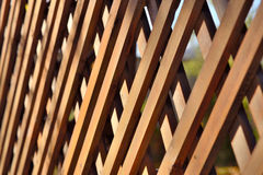 Decorative Wooden Hedge Stock Photo