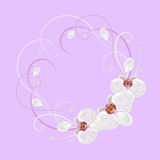 Decorative wreath with floral element Royalty Free Stock Images