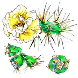Decorative yellow cactus in blossom Stock Images