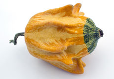 Decorative yellow colour a pumpkin Royalty Free Stock Photography