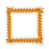Decorative Yellow Frame Stock Image