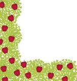 Decorativo-esquina-elemento-con-rojo-manzanas Fotografía de archivo
