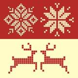 Decoratve winter Stock Images