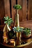 Decorazione accogliente Oro, candele brucianti, navi dorate, succulenti immagine stock