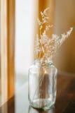Decorazione asciutta della casa del fiore Immagini Stock