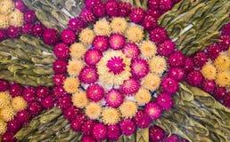 Decorazione bianca e rosa dell'amaranto di globo fotografie stock