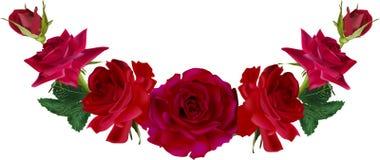 Decorazione con sette rose rosso scuro illustrazione di stock