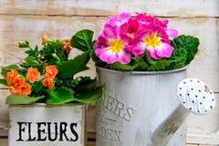 Decorazione d'annata del fiore Immagine Stock