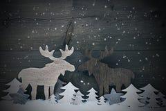Decorazione d'annata di Natale, coppia nell'amore, fiocchi di neve delle alci Fotografie Stock