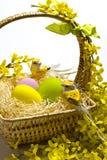 Decorazione del cestino di Pasqua. Fotografie Stock