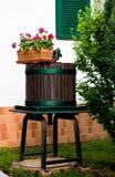 Decorazione del fiore ad un cortile Fotografia Stock