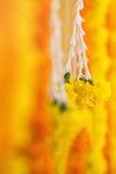 Decorazione del fiore nei accessaries indiani India di nozze Immagine Stock Libera da Diritti