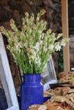 Decorazione del fiore del Tuberose Fotografie Stock Libere da Diritti