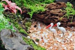 Decorazione del giardino del cassetto Fotografie Stock