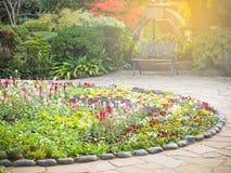 Decorazione del letto di fiore nel giardino di glover Fotografia Stock Libera da Diritti