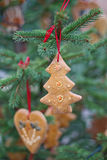 Decorazione del pan di zenzero sull'albero di Natale Immagine Stock