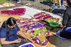 Decorazione del tappeto della processione prestato segatura con i fiori, l'Antigua, Guatemala fotografie stock libere da diritti