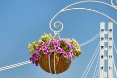 Decorazione del vaso di fiore sul ponte Fotografie Stock