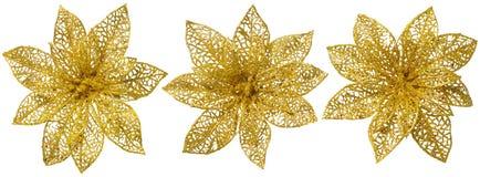 Decorazione dell'albero di Natale del fiore, insieme lucido dell'ornamento dell'oro Fotografia Stock