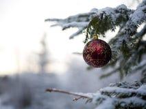 Decorazione dell'albero di Natale - palla rossa con i fiocchi di neve dorati Fotografie Stock Libere da Diritti