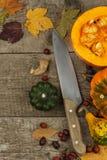 Decorazione dell'azienda agricola di autunno Zucche del raccolto Struttura dell'angolo del fondo di autunno con le zucche e le fo Fotografia Stock Libera da Diritti
