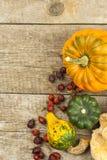 Decorazione dell'azienda agricola di autunno Zucche del raccolto Struttura dell'angolo del fondo di autunno con le zucche e le fo Immagini Stock Libere da Diritti