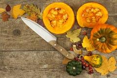 Decorazione dell'azienda agricola di autunno Zucche del raccolto Struttura dell'angolo del fondo di autunno con le zucche e le fo Immagine Stock