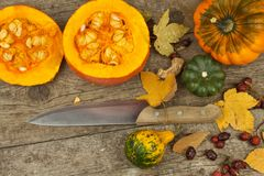 Decorazione dell'azienda agricola di autunno Zucche del raccolto Struttura dell'angolo del fondo di autunno con le zucche e le fo Fotografie Stock Libere da Diritti