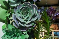 Decorazione dell'interno di natura morta con i fiori verdi Fotografie Stock Libere da Diritti