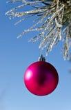decorazione dell'Natale-albero su un pino Fotografie Stock Libere da Diritti