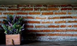 Decorazione della parete Immagini Stock Libere da Diritti