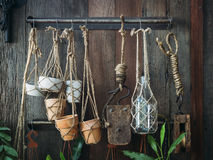 Decorazione della pianta da vaso visualizzata sulla parete di legno Immagini Stock