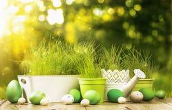 Decorazione della primavera con erba Immagine Stock