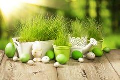 Decorazione della primavera con erba Immagini Stock