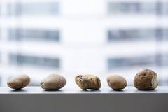 Decorazione della roccia del fiume Fotografie Stock Libere da Diritti