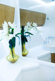 Decorazione della stanza da bagno Fotografie Stock