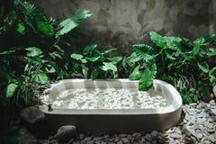 Decorazione della stazione termale, prodotti biologici naturali su un bathtube fotografie stock libere da diritti
