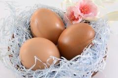 Decorazione delle uova di Pasqua Fotografia Stock Libera da Diritti