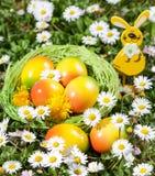 Decorazione delle uova di Pasqua sul giacimento di fiori Immagini Stock Libere da Diritti
