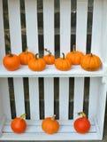 Decorazione delle zucche di autunno in scatole di legno bianche Fotografia Stock Libera da Diritti
