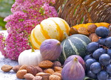 Decorazione di autunno Fotografie Stock